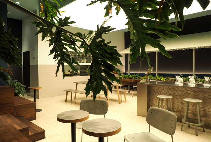 nota architects seesaw coffee bar 24