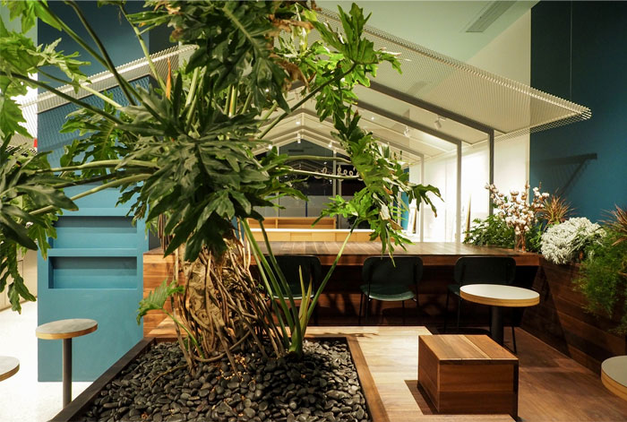 nota architects seesaw coffee bar 9