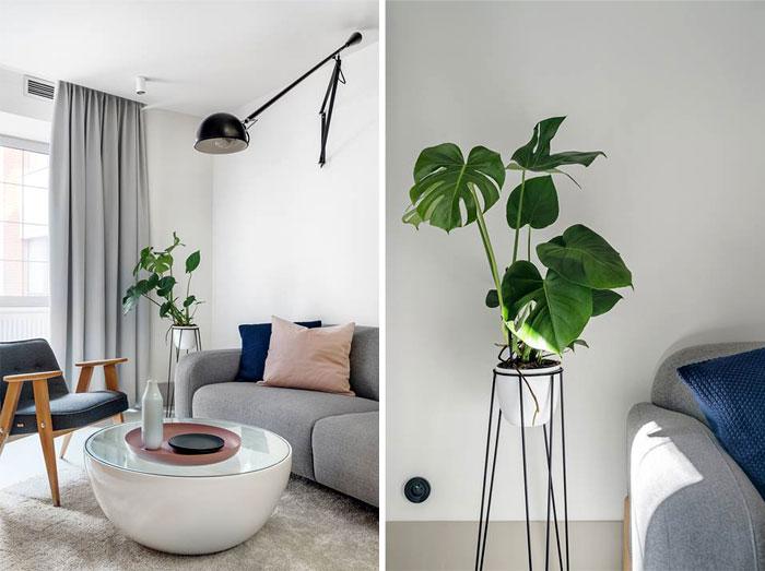 tiny apartment 30 sqm interurban 13