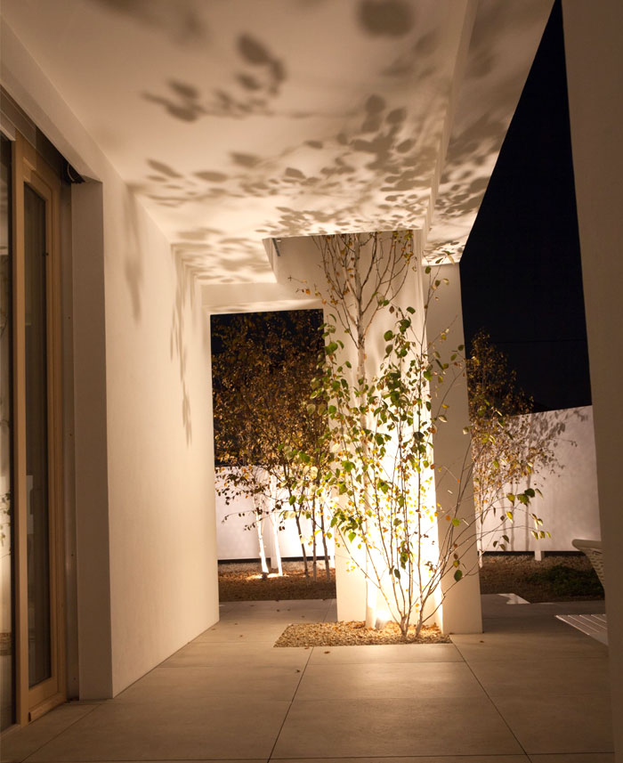 himalayan birch house 13