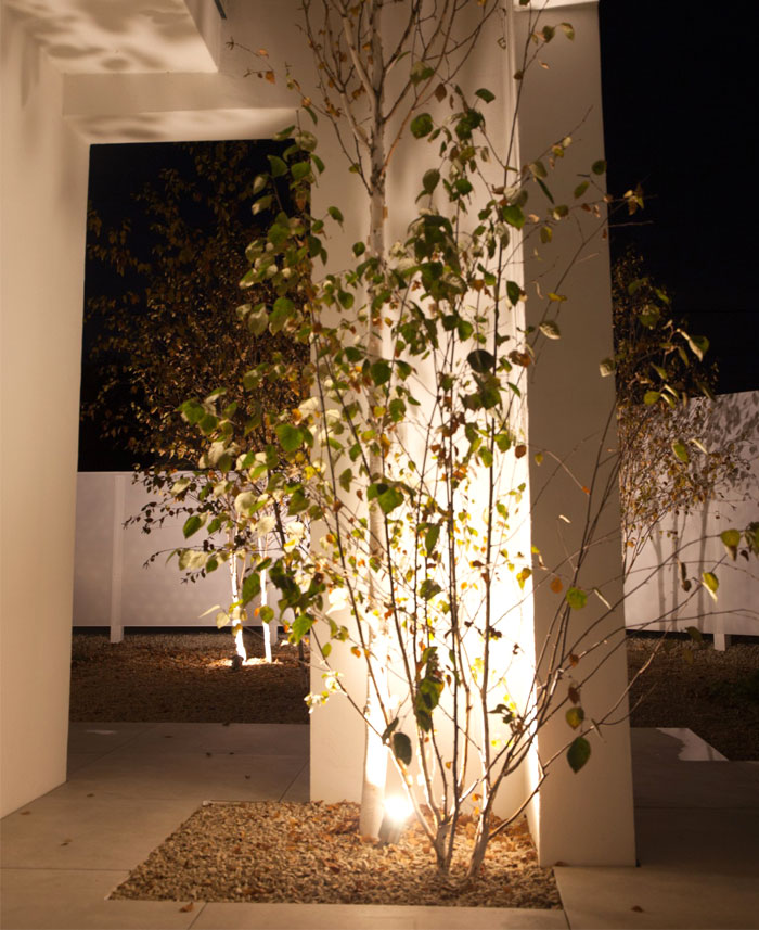 himalayan birch house 14