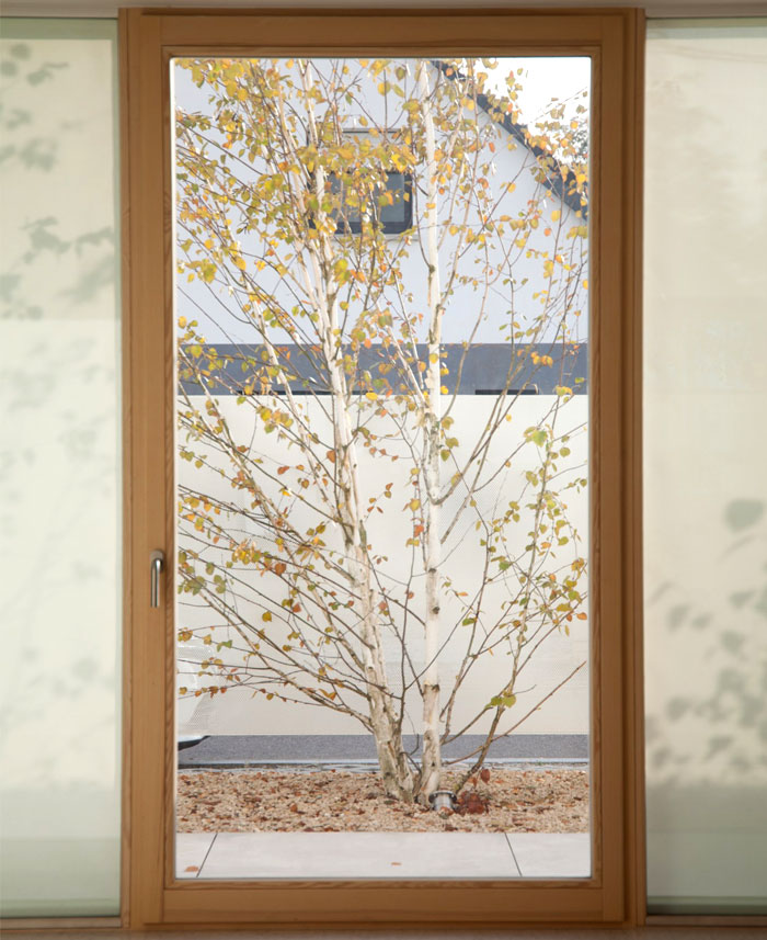 himalayan birch house 17