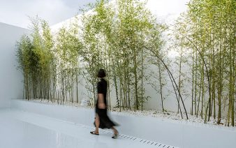 bamboo garden 338x212