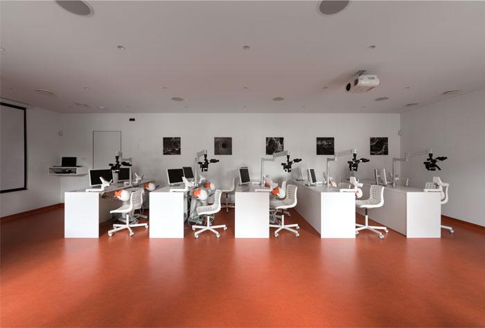 drozdov partners dental clinic 10