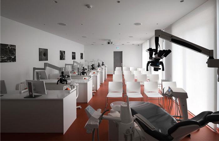 drozdov partners dental clinic 11