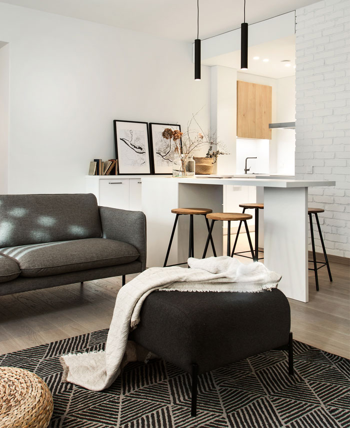 basement apartment kaunas 1planas 1