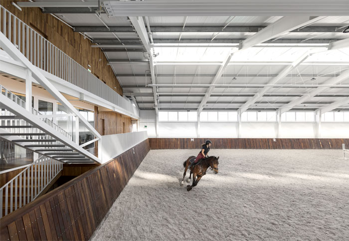 drozdov partners project horse club 1