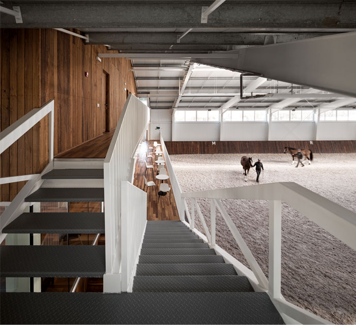 drozdov partners project horse club 14