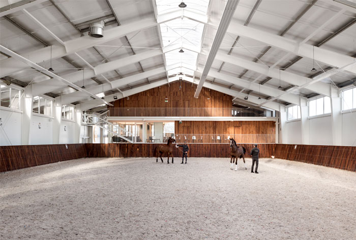 drozdov partners project horse club 16