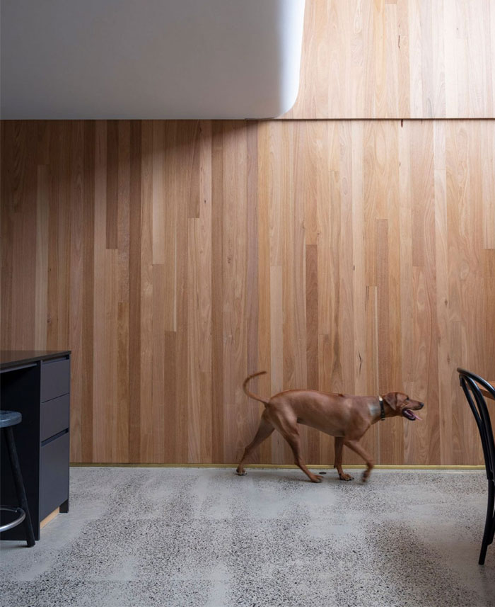 north fitzroy house olaver architecture 6