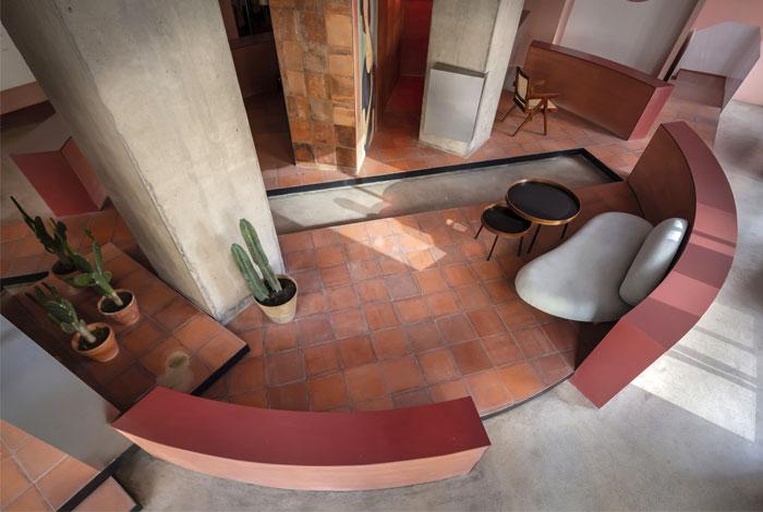 cactus fashion store boundary space design 9