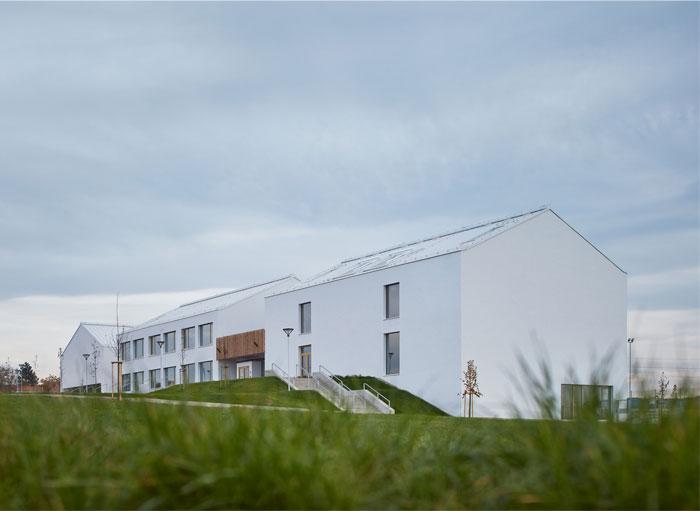 elementary school amos SOA architekti 14