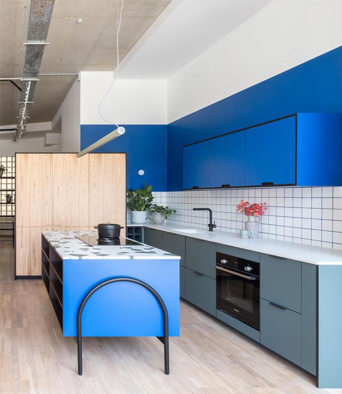 blue kitchen cabinets holte 9