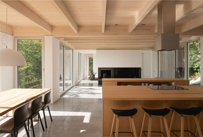 forest house natalie dionne architecture 11