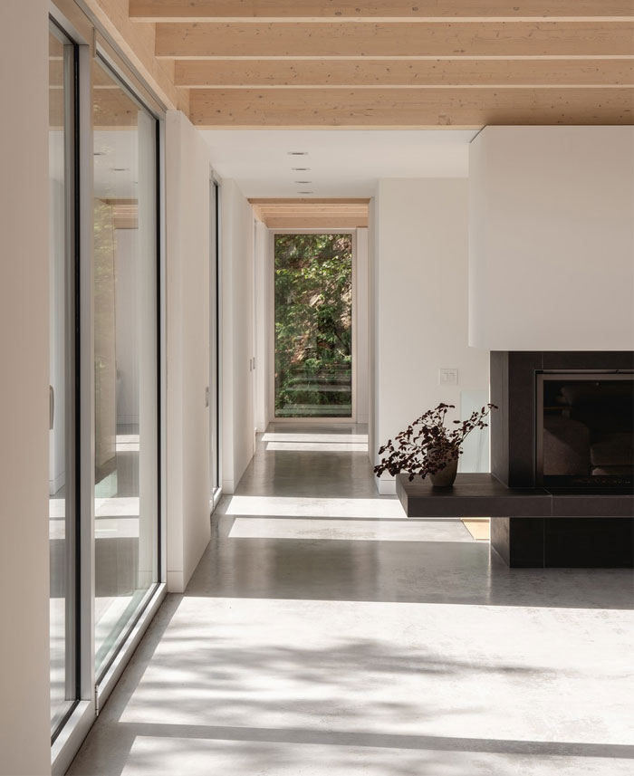forest house natalie dionne architecture 3