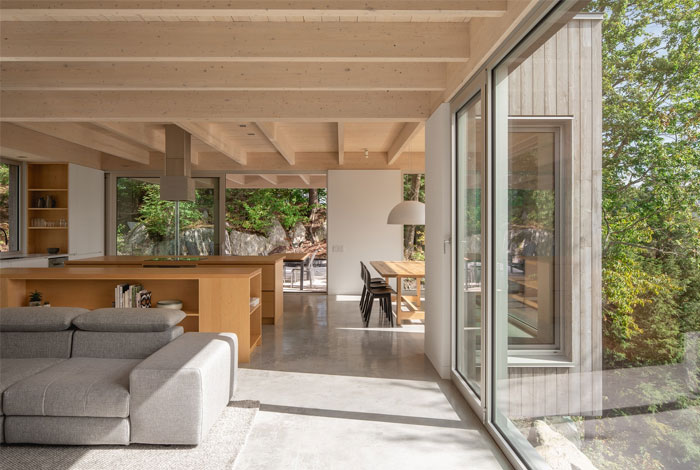 forest house natalie dionne architecture 5