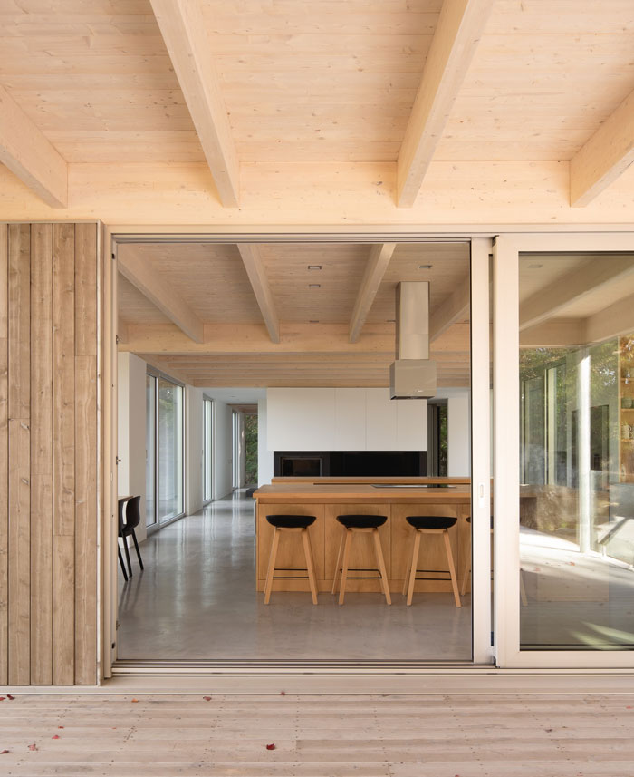 forest house natalie dionne architecture 8