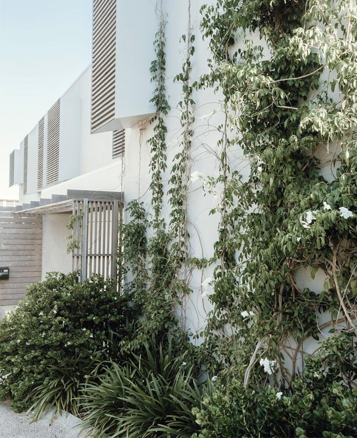 sunshine beach house teeland architects 9