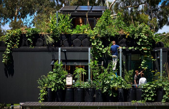 sustainable design trends vertical gardening